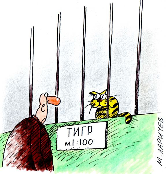 Карикатура: тигр, михаил ларичев