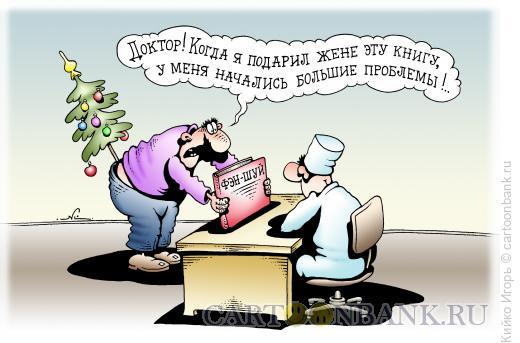 Карикатура: Фэн шуй, Кийко Игорь