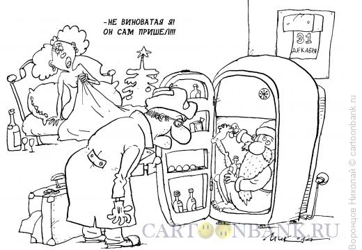Карикатура: Дед Мороз, Воронцов Николай